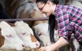 Orientation // Les métiers de l'élevage