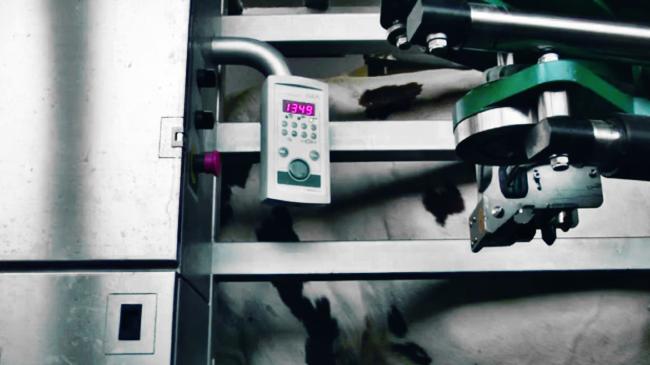 élevage et nouvelles technologies